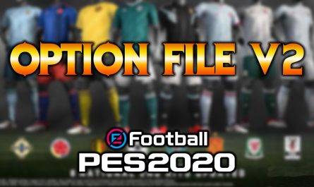 option file pes